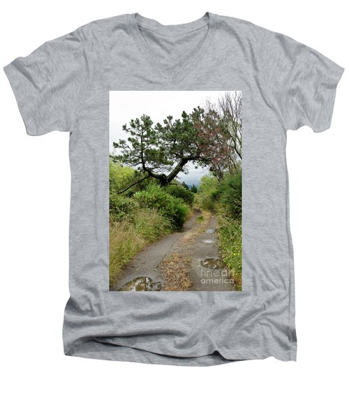 Country Road. New Zealand Men's V-Neck T-Shirt by Yurix Sardinelly