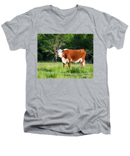 Cow #1 Men's V-Neck T-Shirt