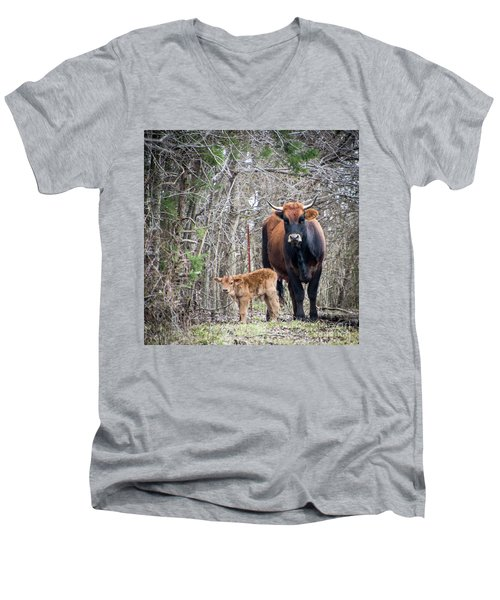 Cow And Calf Men's V-Neck T-Shirt