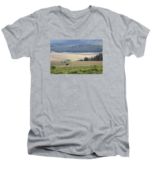 Cow Camp View Men's V-Neck T-Shirt
