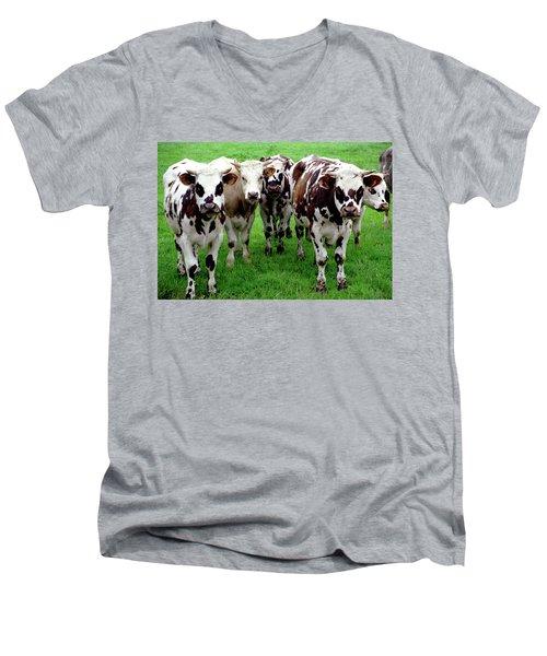 Cow Group Men's V-Neck T-Shirt