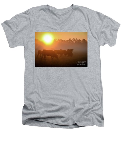 Cows In The Sunrise Mist Men's V-Neck T-Shirt
