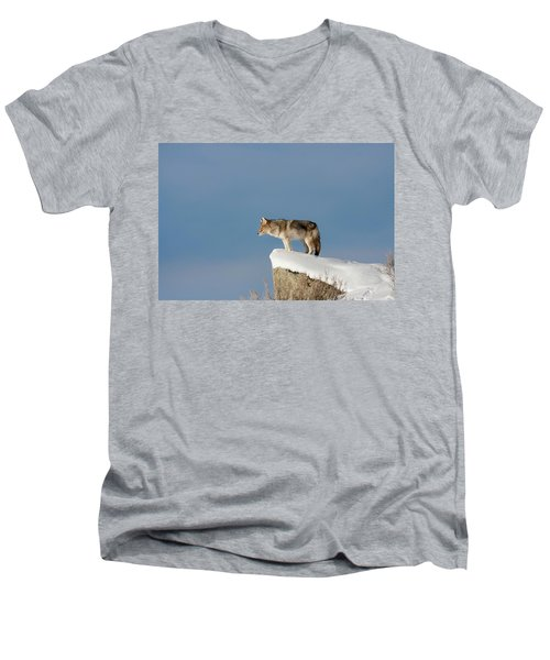 Coyote At Overlook Men's V-Neck T-Shirt