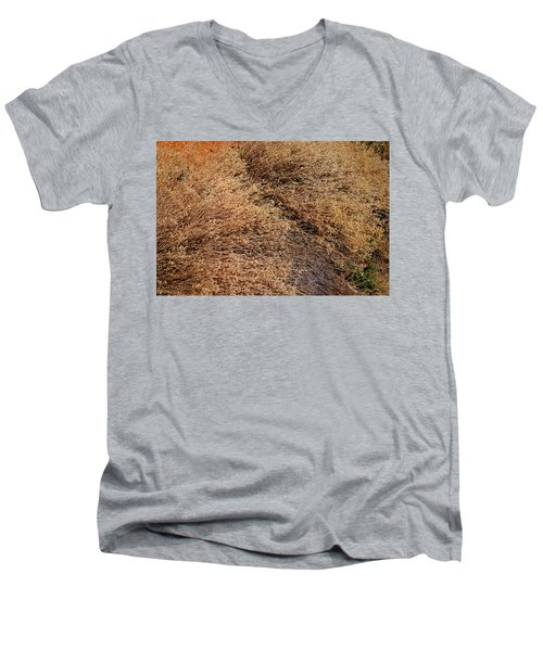 Coyote Brush Men's V-Neck T-Shirt