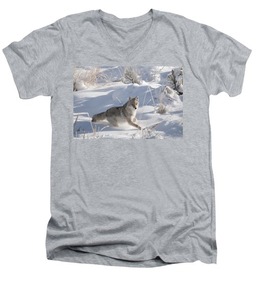 Coyote On The Move Men's V-Neck T-Shirt