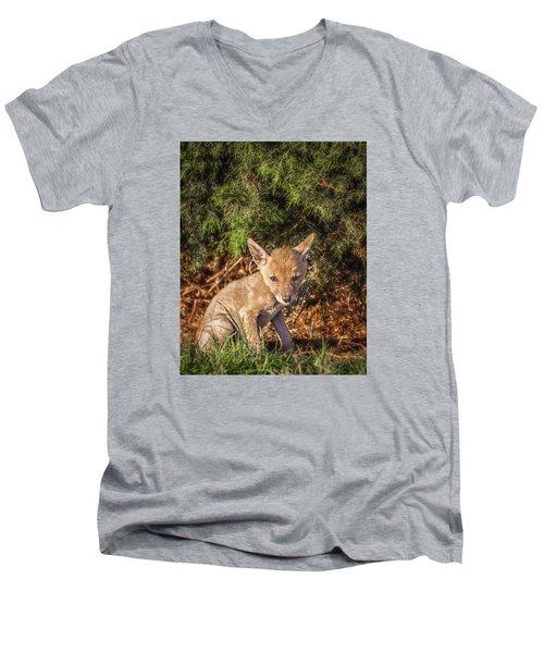 Coyote Pup Men's V-Neck T-Shirt