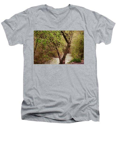 Cozy Stream In American Fork Canyon Utah Men's V-Neck T-Shirt