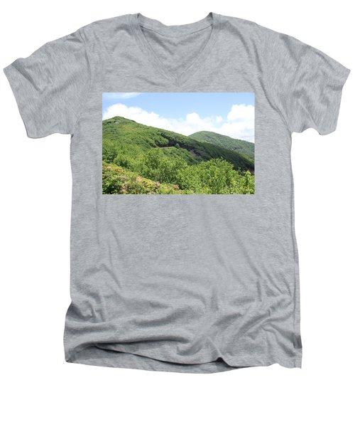 Craggy Gardens Men's V-Neck T-Shirt