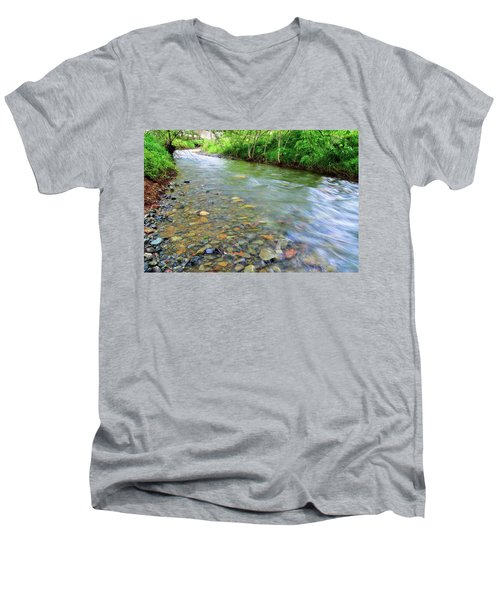 Creek Of Many Colors Men's V-Neck T-Shirt by Donna Blackhall