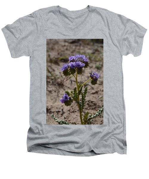 Crenulate Phacelia Flower Men's V-Neck T-Shirt by Jenessa Rahn