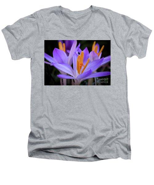 Crocus Explosion Men's V-Neck T-Shirt by Douglas Stucky