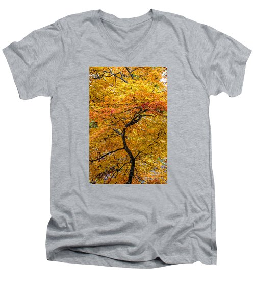 Crooked Tree Trunk Men's V-Neck T-Shirt by Barbara Bowen