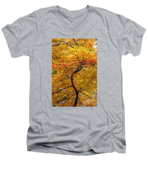 Crooked Tree Trunk Men's V-Neck T-Shirt