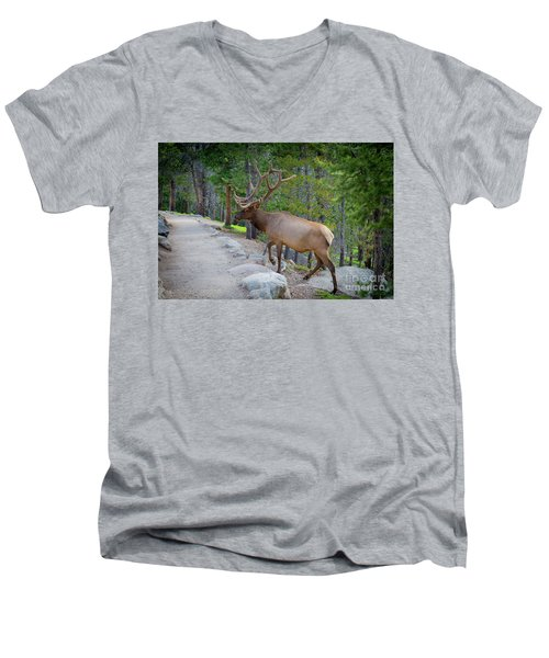 Crossing Paths With An Elk Men's V-Neck T-Shirt
