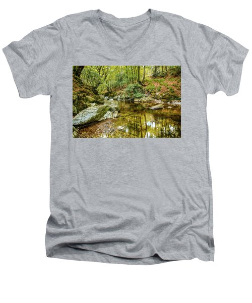 Crough Wood 1 Men's V-Neck T-Shirt