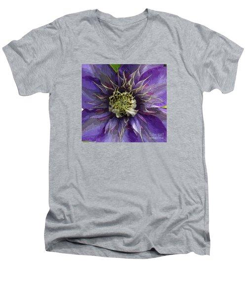 Crystal Fountain Men's V-Neck T-Shirt