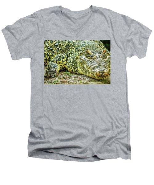 Cuban Croc Men's V-Neck T-Shirt by Josy Cue