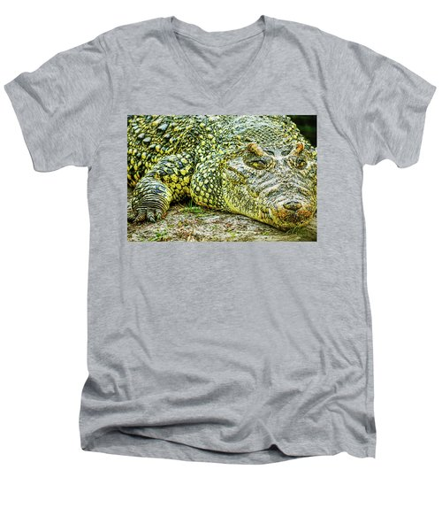 Cuban Croc Men's V-Neck T-Shirt