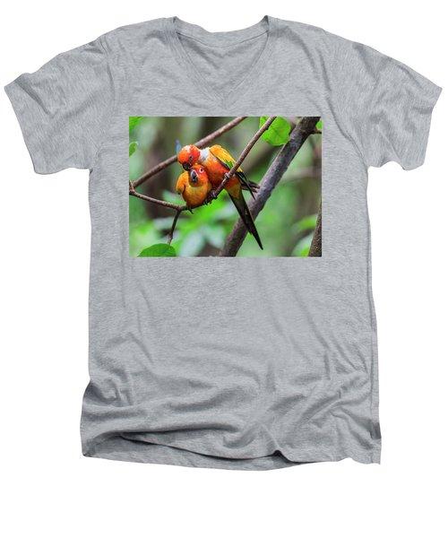 Cuddling Parrots Men's V-Neck T-Shirt