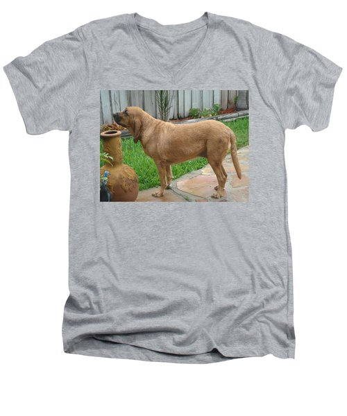 Cujo Getting A Scent Men's V-Neck T-Shirt by Val Oconnor