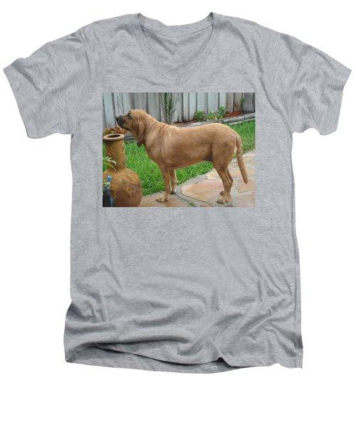 Cujo Getting A Scent Men's V-Neck T-Shirt