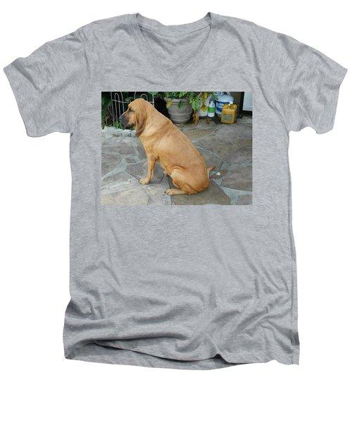 Cujo Sitting Around Men's V-Neck T-Shirt by Val Oconnor