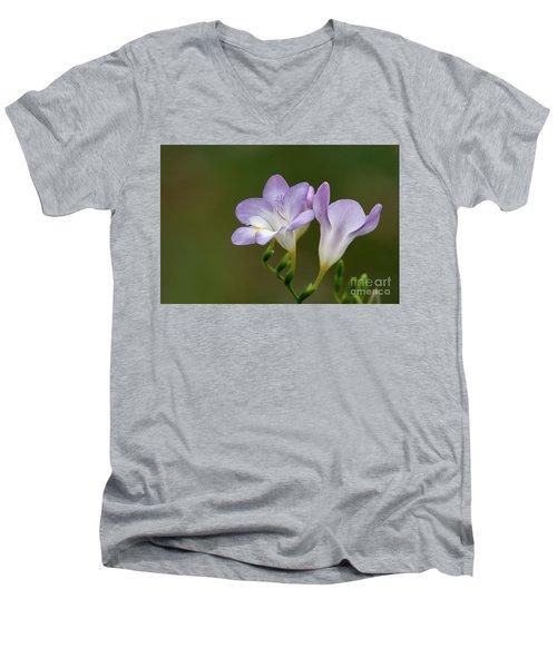 Cupertino Lavender Freesias Men's V-Neck T-Shirt