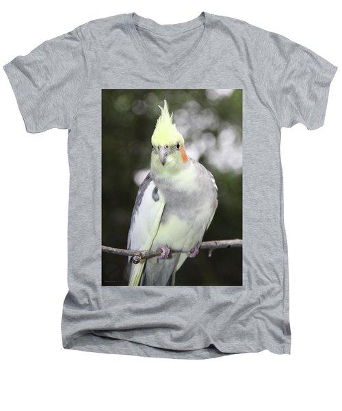 Curious Cockatiel Men's V-Neck T-Shirt by Inspirational Photo Creations Audrey Woods