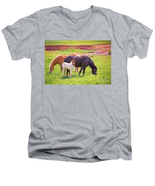 Curious Colt And Mares Men's V-Neck T-Shirt