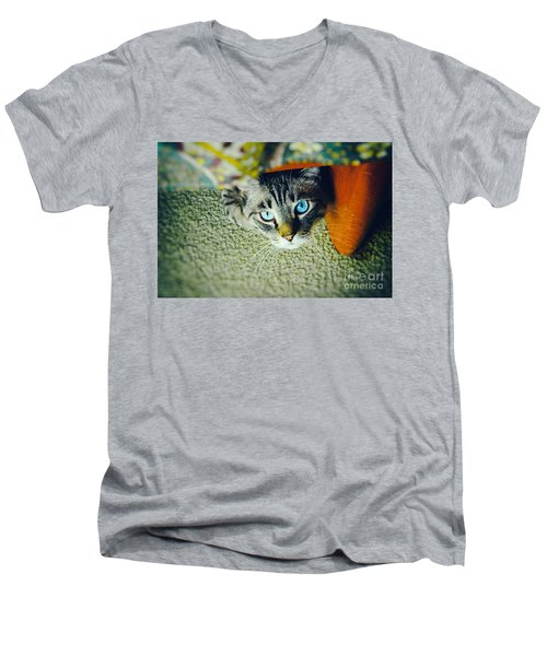 Men's V-Neck T-Shirt featuring the photograph Curious Kitty by Silvia Ganora