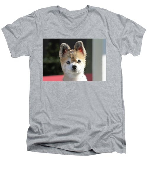 Cute Stare Down Men's V-Neck T-Shirt by Shoal Hollingsworth