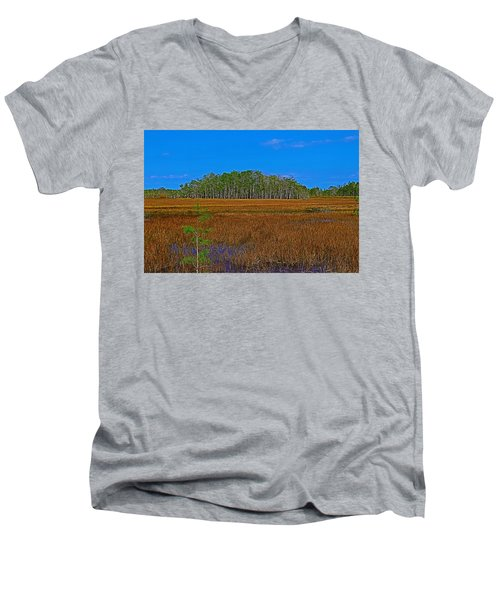 Cypress Hammock Men's V-Neck T-Shirt