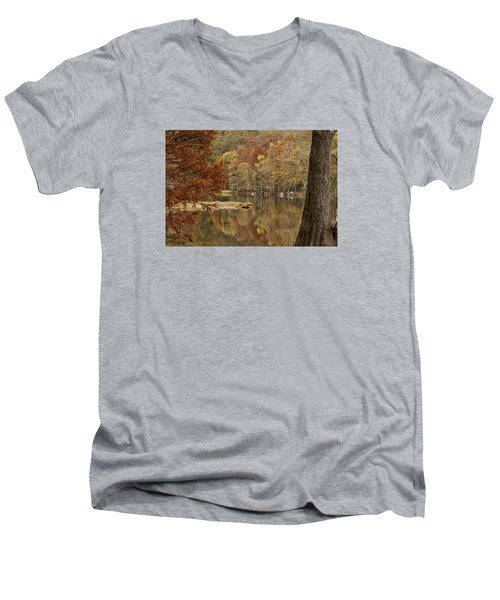 Cypress Window Men's V-Neck T-Shirt