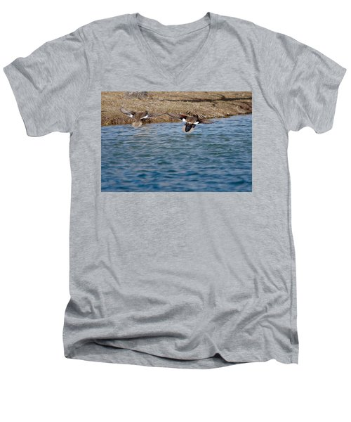 Gadwall Ducks - In Flight Side By Side Men's V-Neck T-Shirt