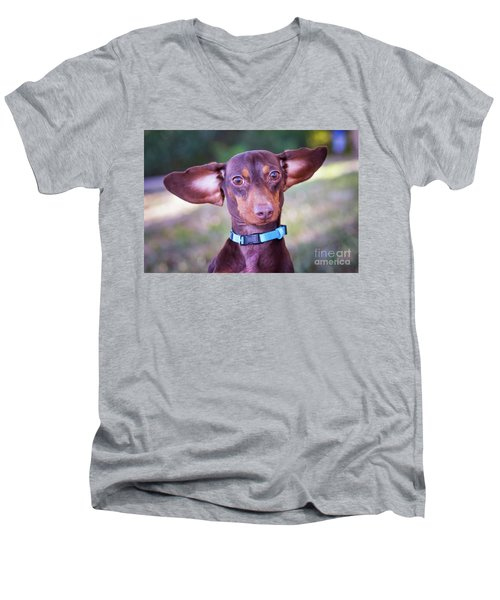 Dachshund Ears Up Men's V-Neck T-Shirt
