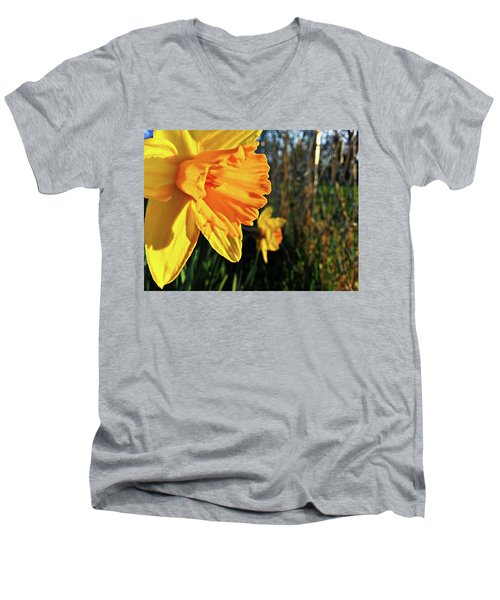 Men's V-Neck T-Shirt featuring the photograph Daffodil Evening by Robert Knight