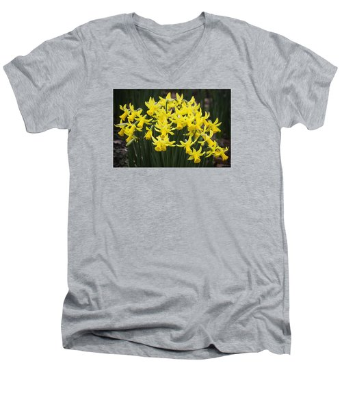Daffodil Yellow Men's V-Neck T-Shirt by Shirley Mitchell