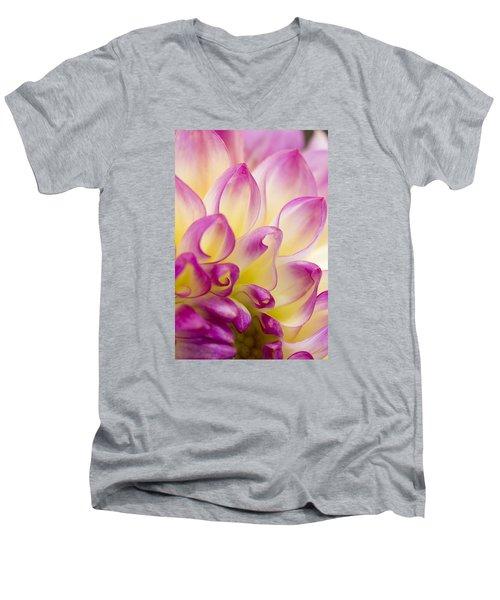 Dahlia Petals 5 Men's V-Neck T-Shirt