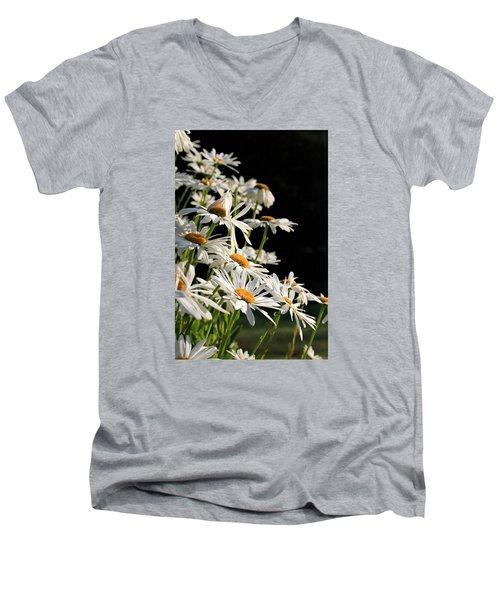 Daisies Men's V-Neck T-Shirt by Dorothy Cunningham