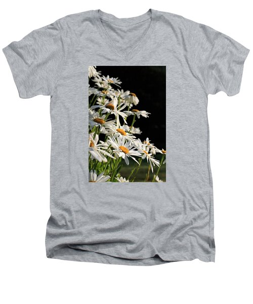Daisies Men's V-Neck T-Shirt