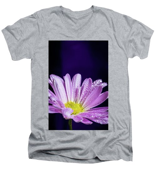 Daisy After The Rain Men's V-Neck T-Shirt