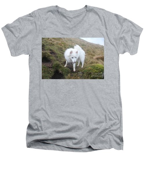 Men's V-Neck T-Shirt featuring the photograph Daisy - Japanees Spits by David Grant