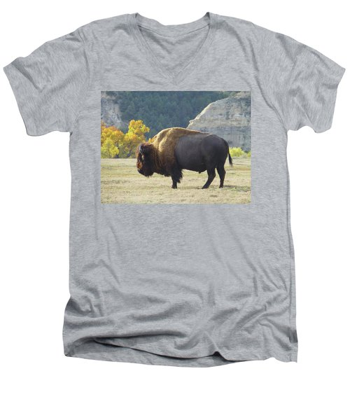 Dakota Badlands Majesty Men's V-Neck T-Shirt