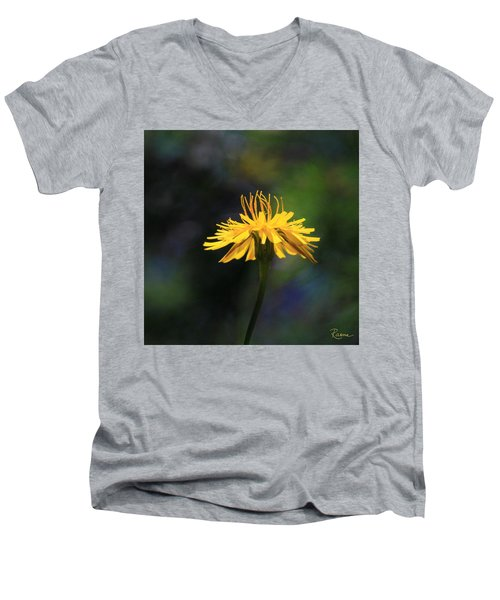 Dandelion Dance Men's V-Neck T-Shirt