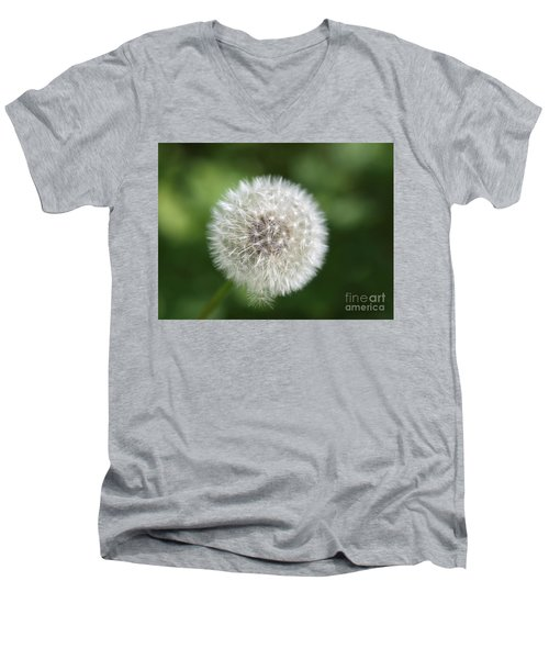 Dandelion - Poof Men's V-Neck T-Shirt