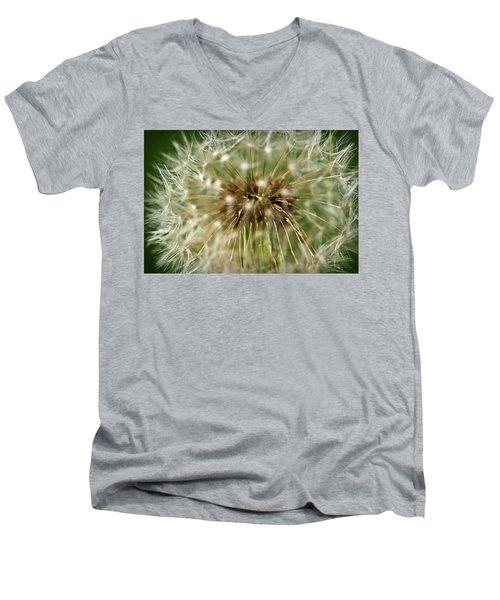 Dandelion Seed Head Men's V-Neck T-Shirt