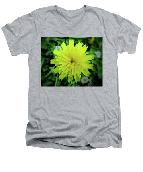 Dandelion Symmetry Men's V-Neck T-Shirt