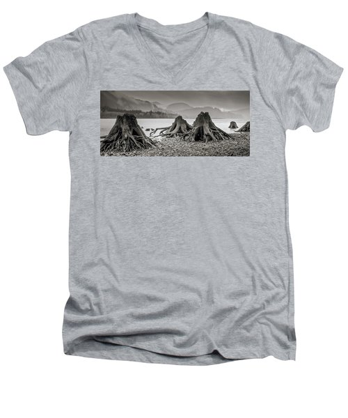 Dark Lake Men's V-Neck T-Shirt