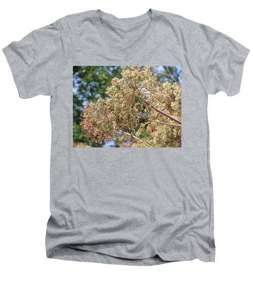 Dazzle Men's V-Neck T-Shirt