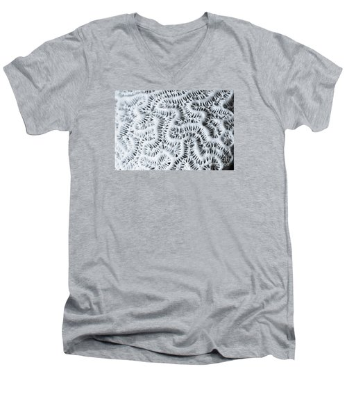 Dead Brain Coral Men's V-Neck T-Shirt by Perry Van Munster